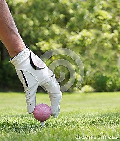 Free Ladies Golf Royalty Free Stock Photos - 5684598