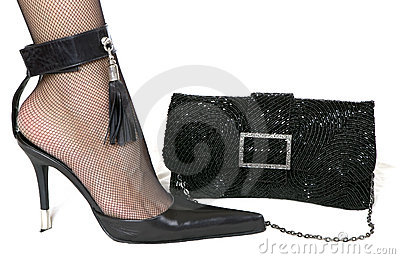 Ladies  shoe and  handbag