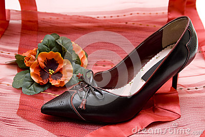 Ladies shoe on red cloth