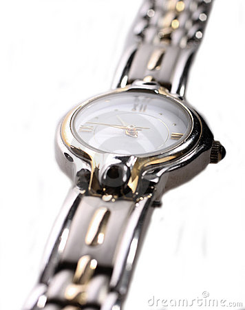 Free Ladies Stainless Steel Watch Stock Photos - 8611043