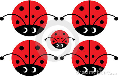Lady bug with eyes