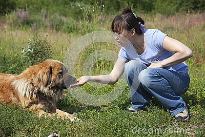Lady feeding dog