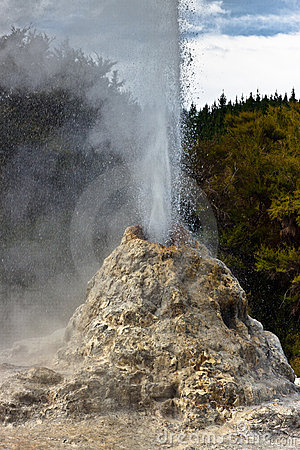 Free Lady Knox Geyser Detail - New Zealand Royalty Free Stock Photography - 18487947