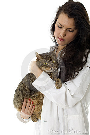 Lady vet in white uniform keeping grey cat