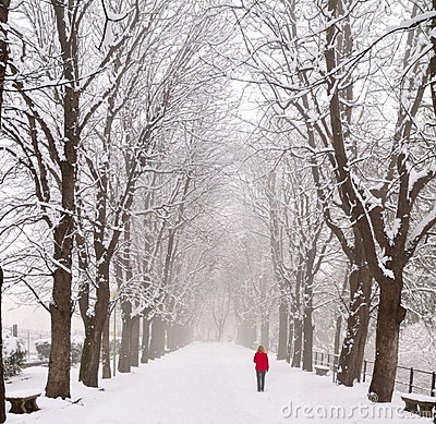 Lady walking in a snow covered boulevard