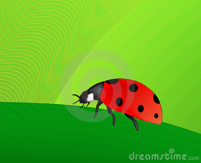 Ladybird (AI format available)
