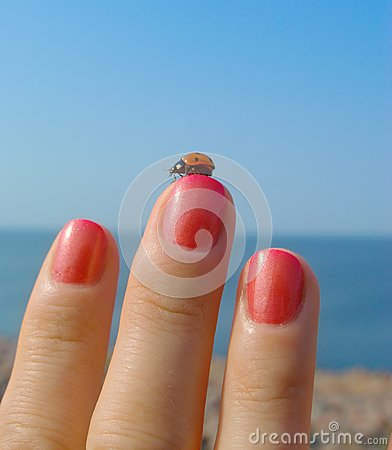 Ladybird on her finger with a manicure