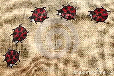 Ladybird horizontal