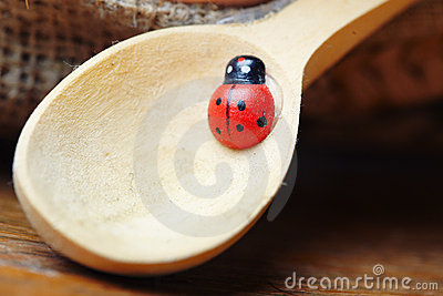 Ladybird on spoon