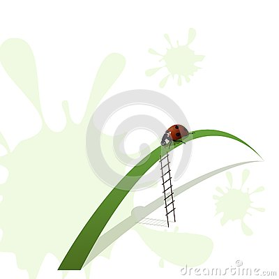 Ladybird and stairway
