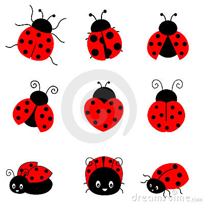 Free Ladybug Royalty Free Stock Photo - 19296475