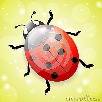 Ladybug on green background, illustration