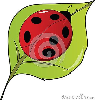 Free LadyBug Lady Bug On A Leaf Stock Image - 10415411