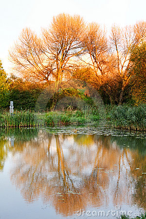 Lago color del otoño