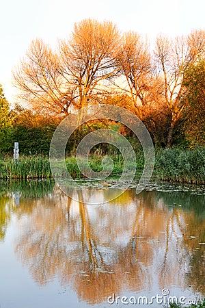Lago color do outono