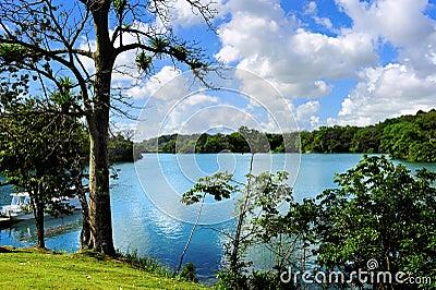 Lago Gatun