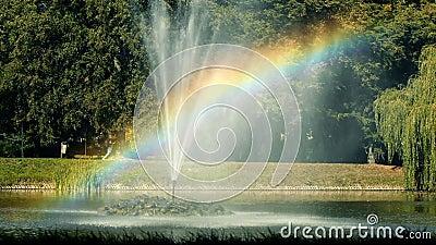 Lago rainbow metrajes