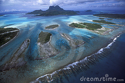 Lagoon reef teeth