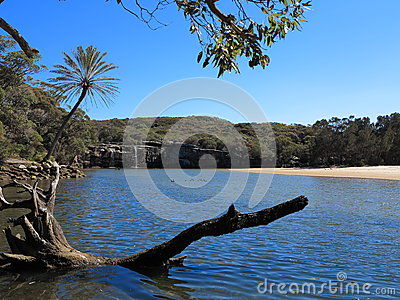 Lagoon in Royal National Park