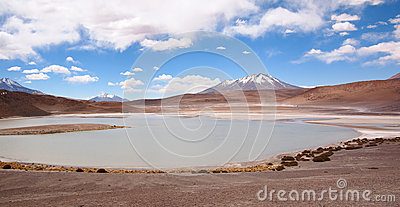 Laguna at the altiplano in Bolivia