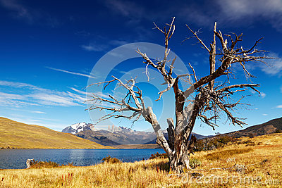 Laguna Azul, Patagonia, Chile