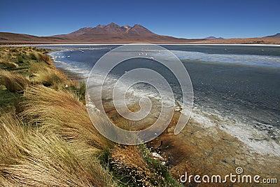 Laguna Canapa, Bolivian Andes