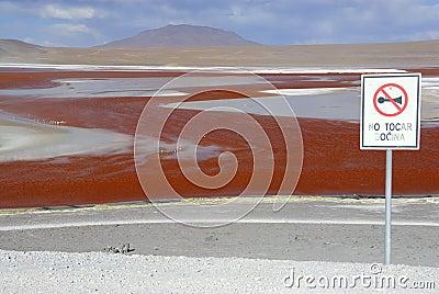 Laguna Colorada, Altiplano, Bolivian Andes