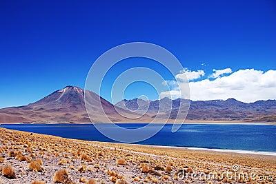 Laguna Miscanti and Volcan Miniques