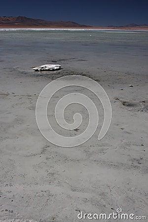 Laguna Salada and a stone