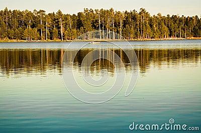 Lake Boater