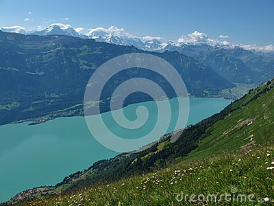 Lake Brienzersee And Interlaken