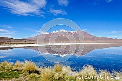Lake Canapa on Altiplano,Bolivia