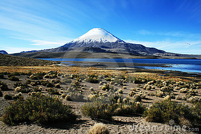 Lake chungara
