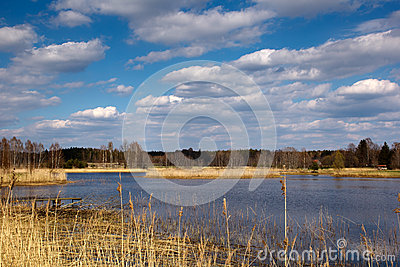 Lake in the countryside
