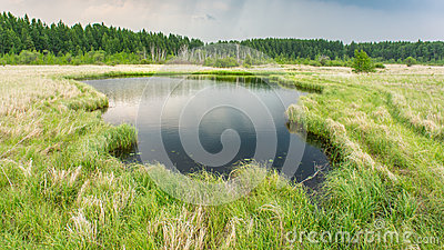 Lake in countryside