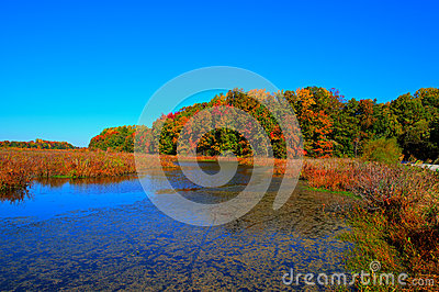 Lake in Fall Colors