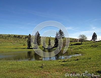 Lake at the field