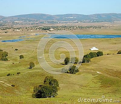 Lake in grassland