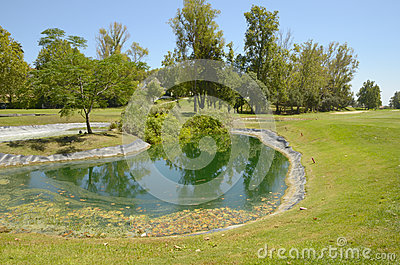 Lake in green golf course