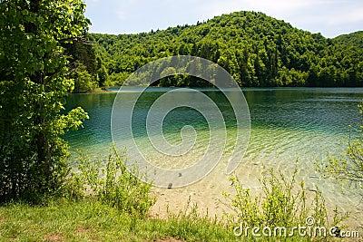 Lake Kozjak