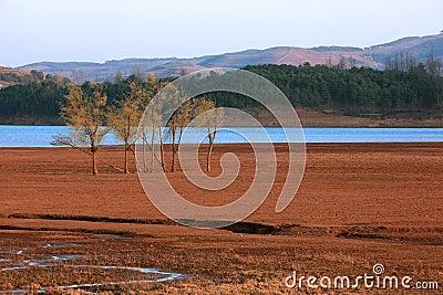 Lake landscapes
