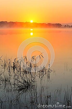 Lake Leane