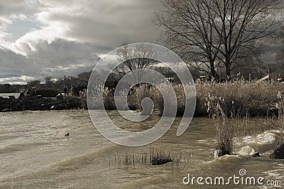 Lake leman