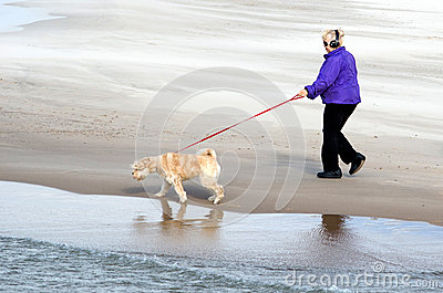 Lake michigan dog walker Editorial Stock Photo