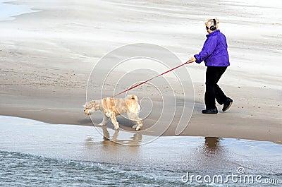 Lake michigan dog walker Editorial Stock Photo