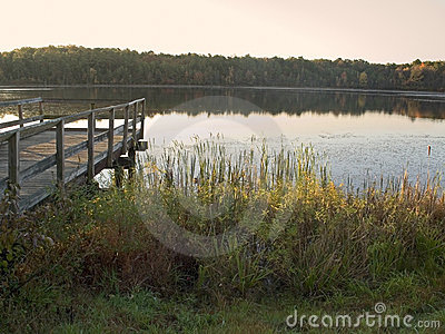 Lake Morning