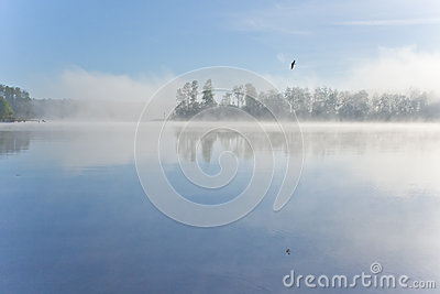 Lake morning fog