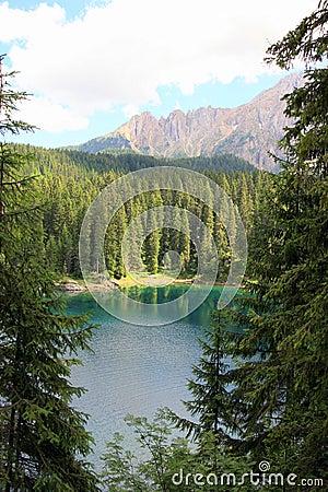 Lake, pines wood & mountain