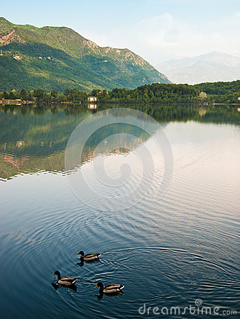 Lake and reflections