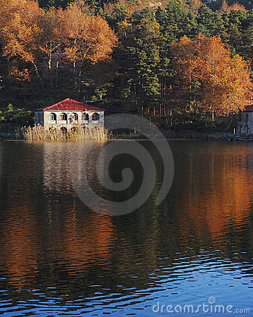Lake reflections in fall